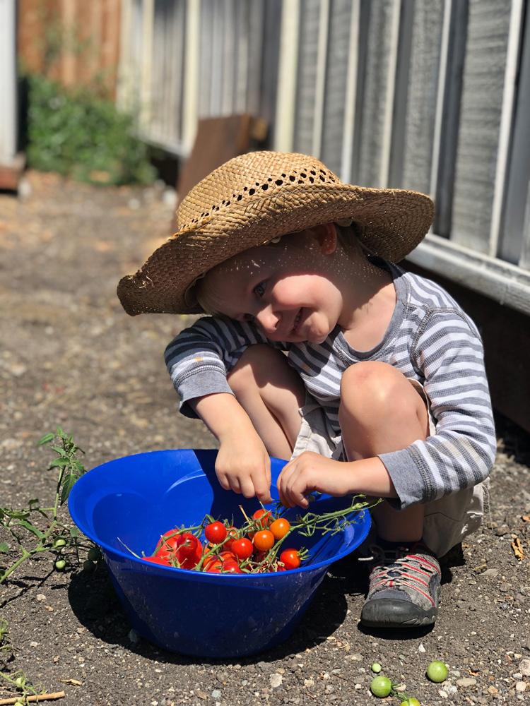 gardening-large.jpg